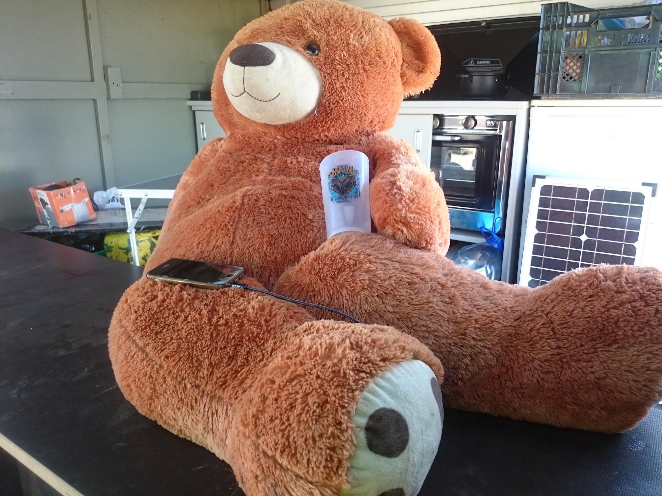 Festivalbär Ted ist jedes Jahr auf dem RaH dabei...